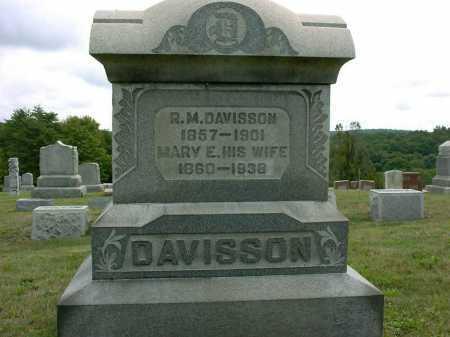 PETTER DAVISSON, MARY E. - Vinton County, Ohio | MARY E. PETTER DAVISSON - Ohio Gravestone Photos