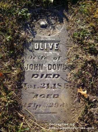 FULLER DOWD, OLIVE - Vinton County, Ohio | OLIVE FULLER DOWD - Ohio Gravestone Photos