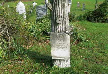 EWING, DR. J. A. - Vinton County, Ohio | DR. J. A. EWING - Ohio Gravestone Photos