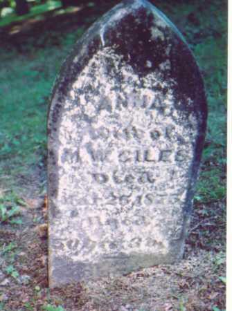 GILES, ANNA - Vinton County, Ohio   ANNA GILES - Ohio Gravestone Photos