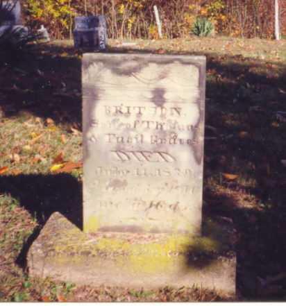 GRAVES, BRITTON - Vinton County, Ohio | BRITTON GRAVES - Ohio Gravestone Photos