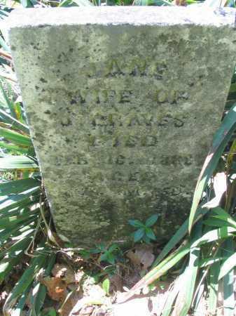 MCVEY GRAVES, JANE (JENNIE) - Vinton County, Ohio | JANE (JENNIE) MCVEY GRAVES - Ohio Gravestone Photos