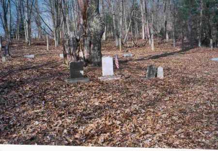GREGORY, CEMETERY - Vinton County, Ohio | CEMETERY GREGORY - Ohio Gravestone Photos