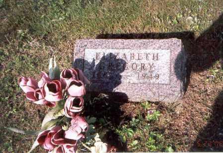 GREGORY, ELIZABETH - Vinton County, Ohio | ELIZABETH GREGORY - Ohio Gravestone Photos