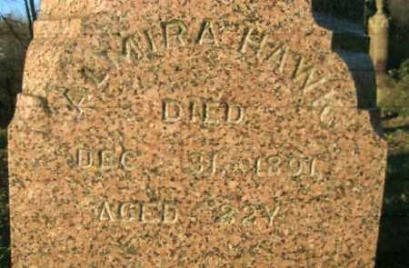 SHEARER HAWK, ALMIRA - Vinton County, Ohio | ALMIRA SHEARER HAWK - Ohio Gravestone Photos