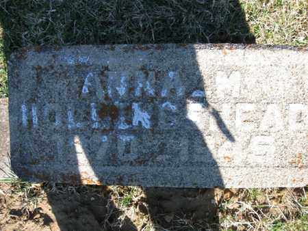 TYO HOLLINGSHEAD, ANNA MARIE - Vinton County, Ohio | ANNA MARIE TYO HOLLINGSHEAD - Ohio Gravestone Photos