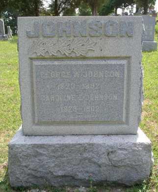 JOHNSON, GEORGE W. - Vinton County, Ohio | GEORGE W. JOHNSON - Ohio Gravestone Photos