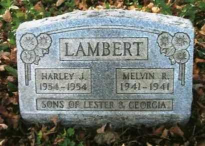 LAMBERT, HARLEY J. - Vinton County, Ohio   HARLEY J. LAMBERT - Ohio Gravestone Photos