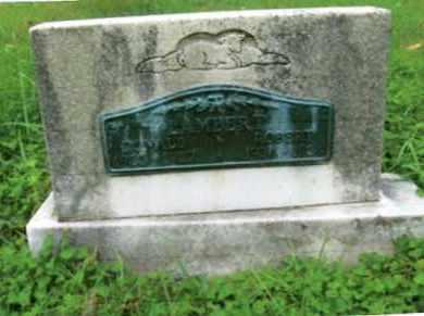 LAMBERT, ROBERT LEE - Vinton County, Ohio | ROBERT LEE LAMBERT - Ohio Gravestone Photos