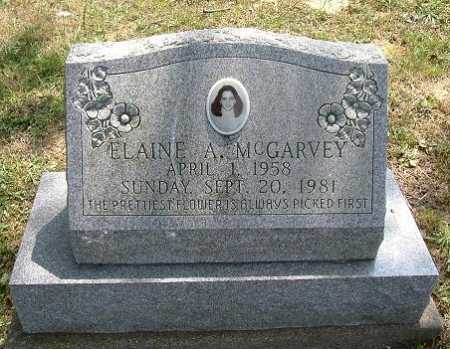 MCGARVEY, ELAINE A. - Vinton County, Ohio | ELAINE A. MCGARVEY - Ohio Gravestone Photos