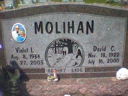 MOLIHAN, DAVID - Vinton County, Ohio | DAVID MOLIHAN - Ohio Gravestone Photos