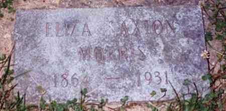 MORRIS, ELIZA - Vinton County, Ohio | ELIZA MORRIS - Ohio Gravestone Photos