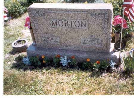 MORTON, HARRY E. - Vinton County, Ohio | HARRY E. MORTON - Ohio Gravestone Photos