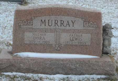MURRAY, LEWIS - Vinton County, Ohio | LEWIS MURRAY - Ohio Gravestone Photos