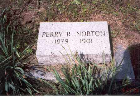 NORTON, PERRY R. - Vinton County, Ohio   PERRY R. NORTON - Ohio Gravestone Photos