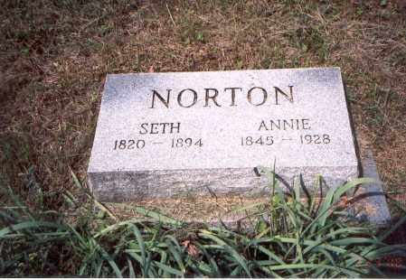 MARKINS NORTON, ANNIE - Vinton County, Ohio | ANNIE MARKINS NORTON - Ohio Gravestone Photos