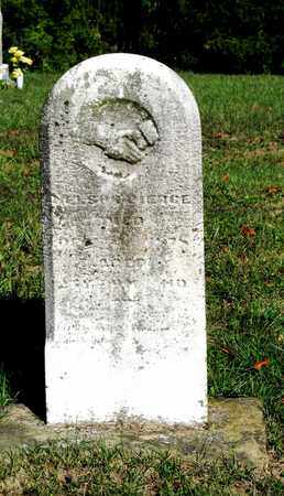 PIERCE, NELSON - Vinton County, Ohio | NELSON PIERCE - Ohio Gravestone Photos