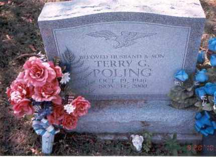 POLING, TERRY G. - Vinton County, Ohio | TERRY G. POLING - Ohio Gravestone Photos