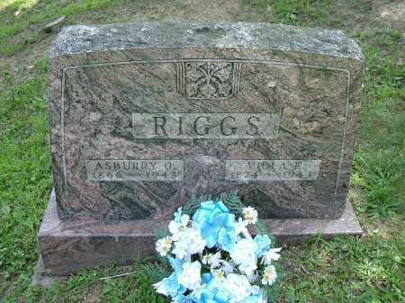 PRICE RIGGS, VIOLA FLORENCE - Vinton County, Ohio | VIOLA FLORENCE PRICE RIGGS - Ohio Gravestone Photos