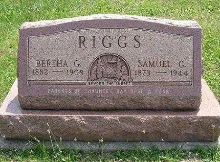RIGGS, SAMUEL G. - Vinton County, Ohio | SAMUEL G. RIGGS - Ohio Gravestone Photos