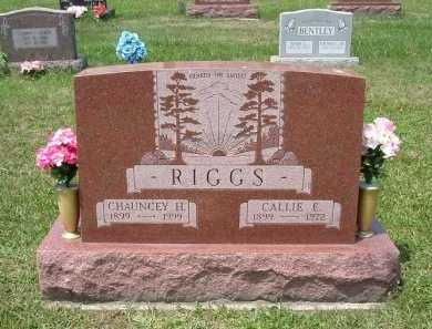 RIGGS, CALLIE E. - Vinton County, Ohio | CALLIE E. RIGGS - Ohio Gravestone Photos