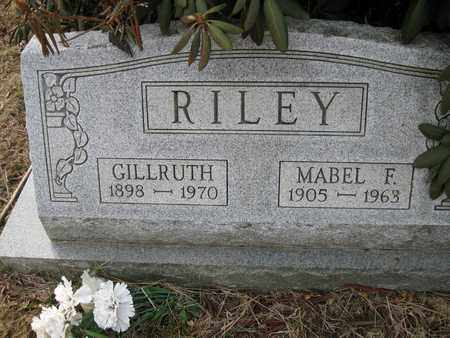 RILEY, MABEL F. - Vinton County, Ohio | MABEL F. RILEY - Ohio Gravestone Photos