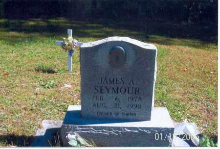 SEYMOUR, JAMES A. - Vinton County, Ohio | JAMES A. SEYMOUR - Ohio Gravestone Photos
