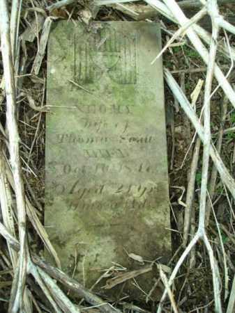 SOULT, NEOMY - Vinton County, Ohio | NEOMY SOULT - Ohio Gravestone Photos