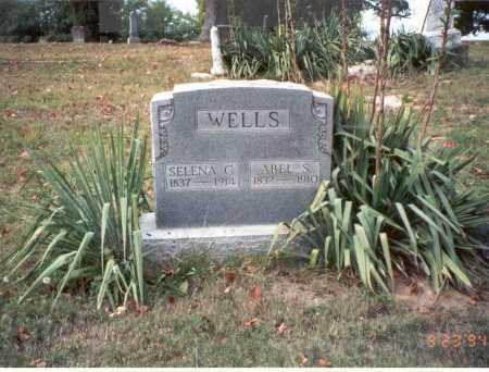WELLS, ABEL S. - Vinton County, Ohio   ABEL S. WELLS - Ohio Gravestone Photos