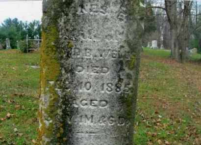 WELLS, AGNES ELIZA - Vinton County, Ohio | AGNES ELIZA WELLS - Ohio Gravestone Photos
