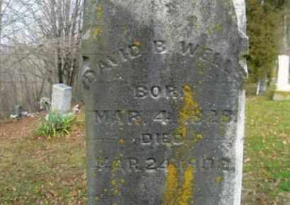 WELLS, DAVID B. - Vinton County, Ohio   DAVID B. WELLS - Ohio Gravestone Photos