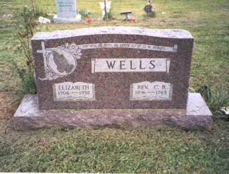 MCGHEE WELLS, ELIZABETH - Vinton County, Ohio | ELIZABETH MCGHEE WELLS - Ohio Gravestone Photos