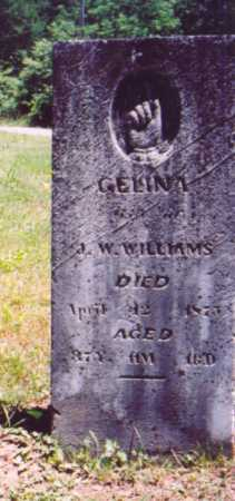 WILLIAMS, GELINA - Vinton County, Ohio | GELINA WILLIAMS - Ohio Gravestone Photos