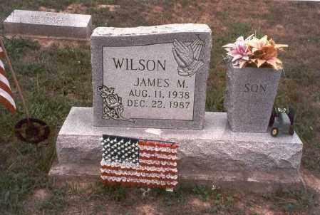WILSON, JAMES MILTON - Vinton County, Ohio   JAMES MILTON WILSON - Ohio Gravestone Photos