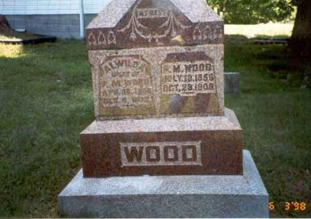 WOOD, ALWILDA - Vinton County, Ohio | ALWILDA WOOD - Ohio Gravestone Photos