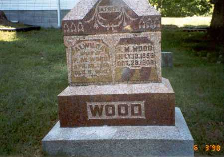 WOOD, FRANCIS MARION - Vinton County, Ohio | FRANCIS MARION WOOD - Ohio Gravestone Photos