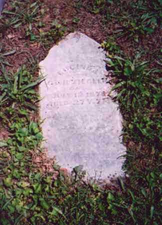 ZIEGLER, LUCINDA - Vinton County, Ohio   LUCINDA ZIEGLER - Ohio Gravestone Photos