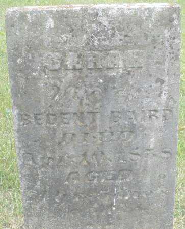 BAIRD, SARAH - Warren County, Ohio | SARAH BAIRD - Ohio Gravestone Photos
