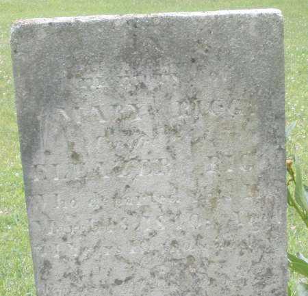 BIGG, MARY - Warren County, Ohio   MARY BIGG - Ohio Gravestone Photos