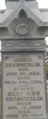 CHAMBERLIN, MARY ANN - Warren County, Ohio | MARY ANN CHAMBERLIN - Ohio Gravestone Photos