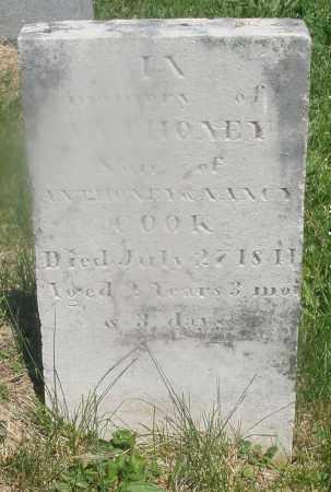 COOK, ANTHONEY - Warren County, Ohio   ANTHONEY COOK - Ohio Gravestone Photos