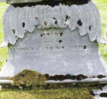 DENISE, INFANT SON - Warren County, Ohio   INFANT SON DENISE - Ohio Gravestone Photos