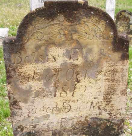 ELY, BETSY - Warren County, Ohio | BETSY ELY - Ohio Gravestone Photos