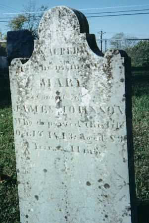JOHNSON, MARY - Warren County, Ohio | MARY JOHNSON - Ohio Gravestone Photos