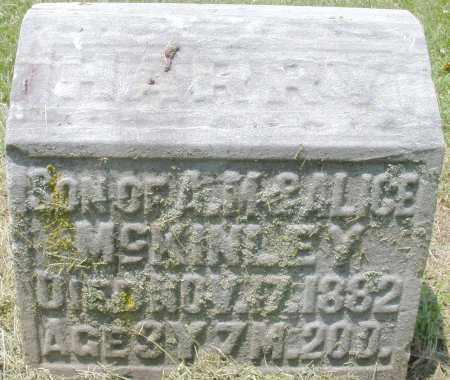MCKINLEY, HARRY - Warren County, Ohio | HARRY MCKINLEY - Ohio Gravestone Photos