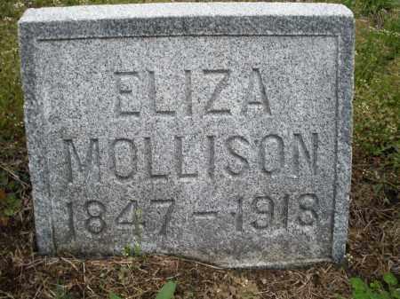 MOLLESON, ELIZA - Warren County, Ohio   ELIZA MOLLESON - Ohio Gravestone Photos
