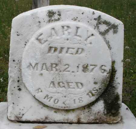 MOSES, EARL Y. - Warren County, Ohio | EARL Y. MOSES - Ohio Gravestone Photos