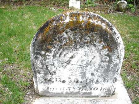 SCHENCK, WILLIAM - Warren County, Ohio | WILLIAM SCHENCK - Ohio Gravestone Photos