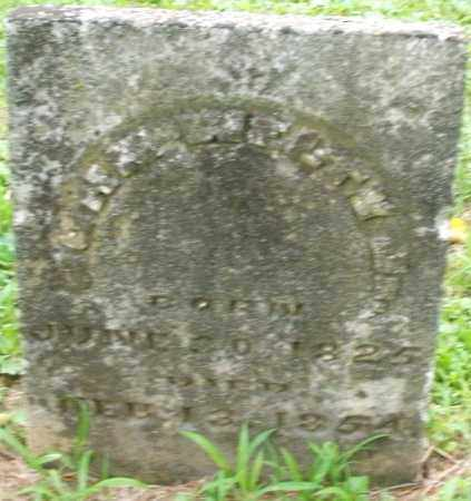 WELTY, CHARLES - Warren County, Ohio | CHARLES WELTY - Ohio Gravestone Photos