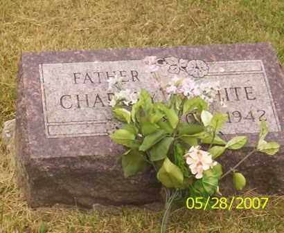 WHITE, CHARLES - Warren County, Ohio | CHARLES WHITE - Ohio Gravestone Photos